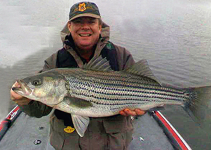 Winter Striper