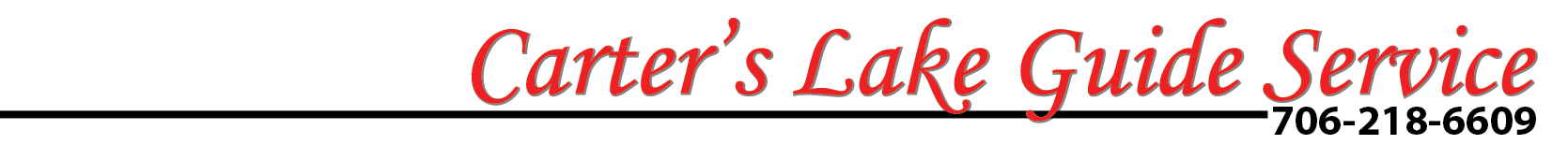 clgs lettering