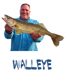 Gallery Walleye Icon