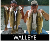 icon walleye